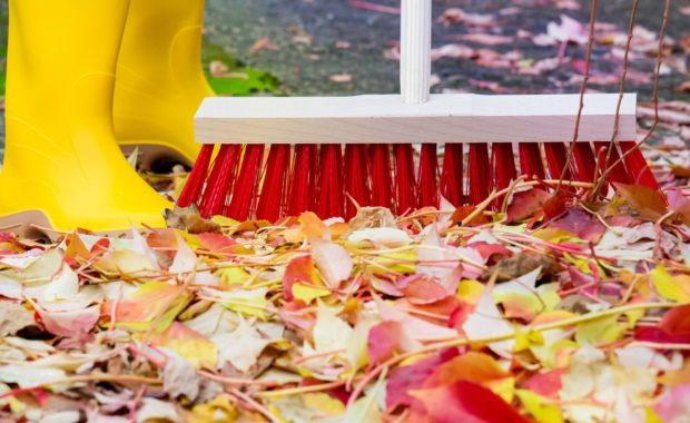 Fall broom feature image